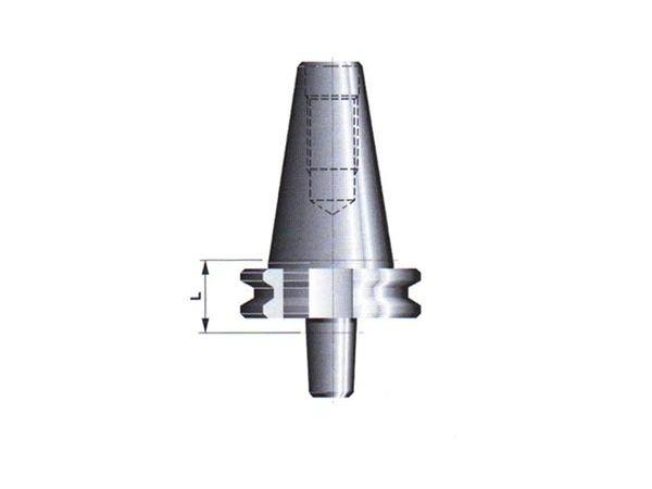 Trn pro vrtačková sklíčidla 591024, DIN 69871-A